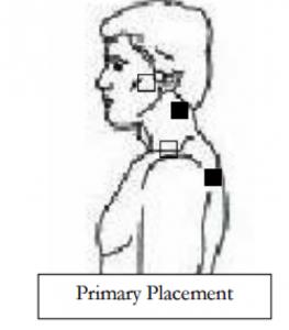 in body where tendons trachea in body wiring diagram